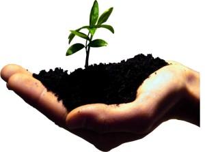 Entrepreneur-growth